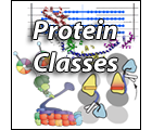 Search Proteins